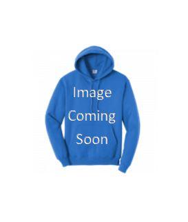 Hooded sweatshirt (2021)